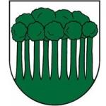 Erb Povina