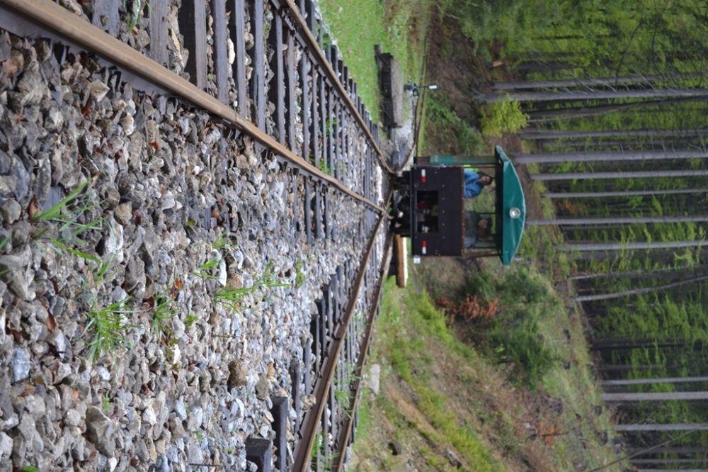 Regióny Oravu a Kysuce spojí unikátna lesná železnica, foto 2