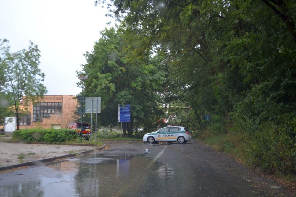 Spadnutý strom na ceste pri Žilinskej univerzite 25.7.2015, foto 1