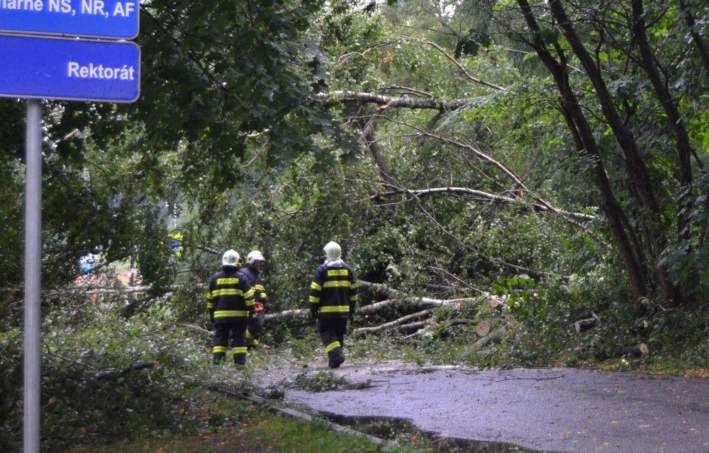Spadnutý strom na ceste pri Žilinskej univerzite 25.7.2015, foto 2