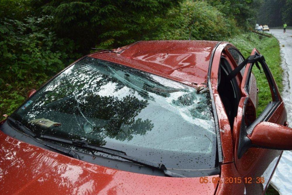 Pri Námestove spadol na auto za jazdy strom, foto 3