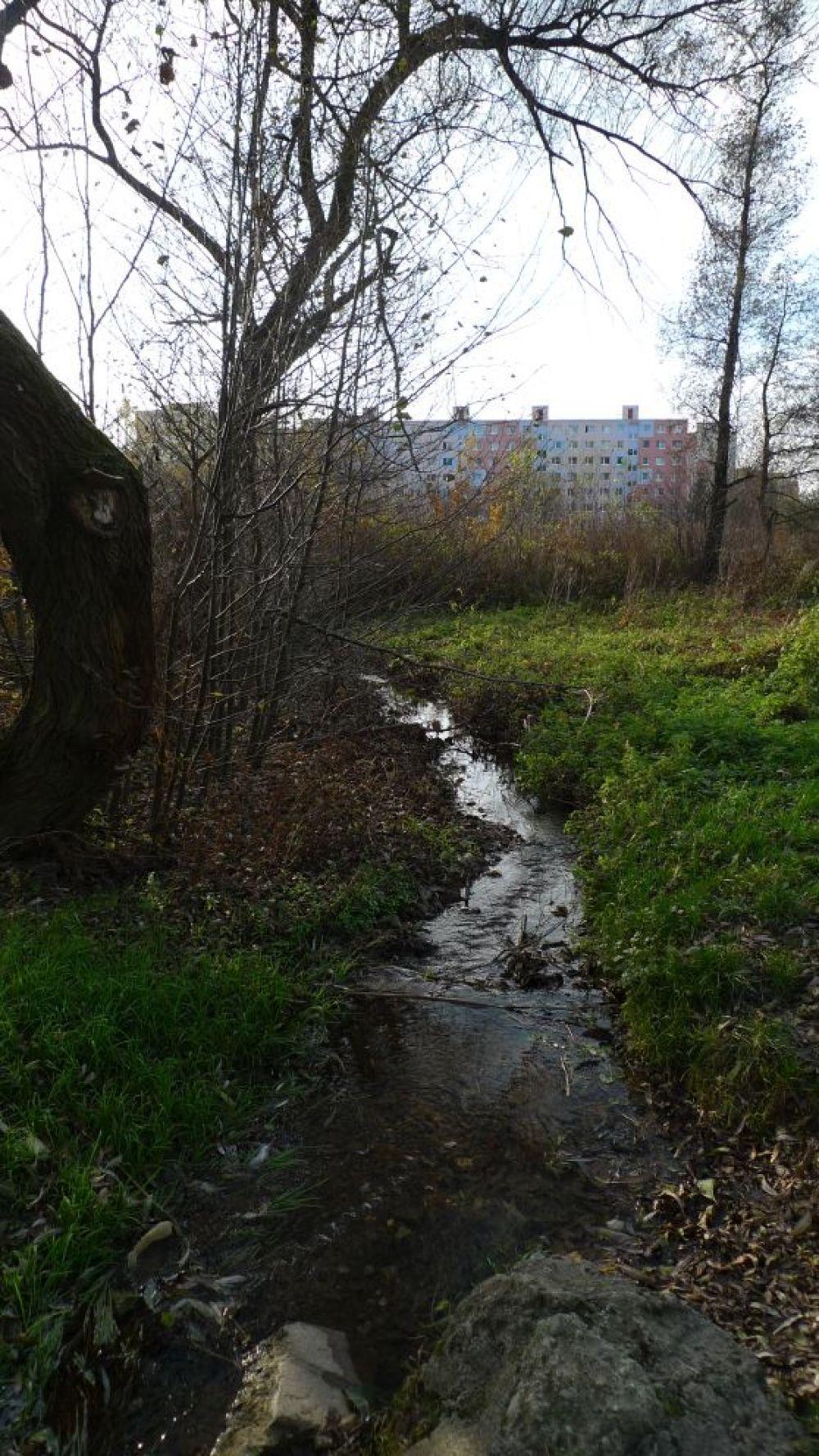 Koryto potoka Všivák, foto 2