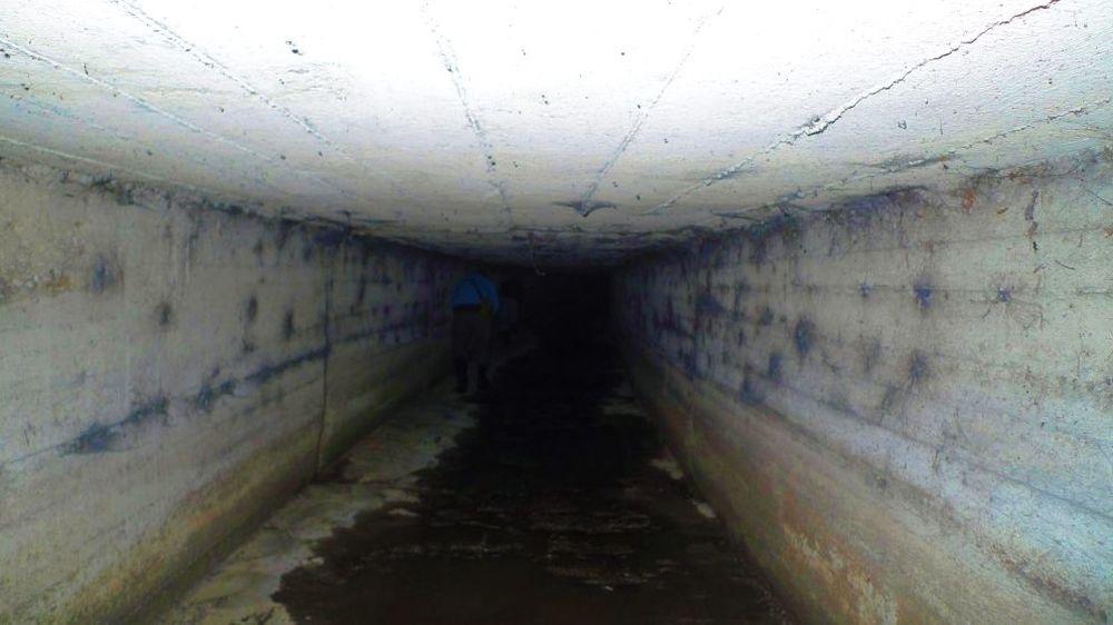 Koryto potoka Všivák, foto 3