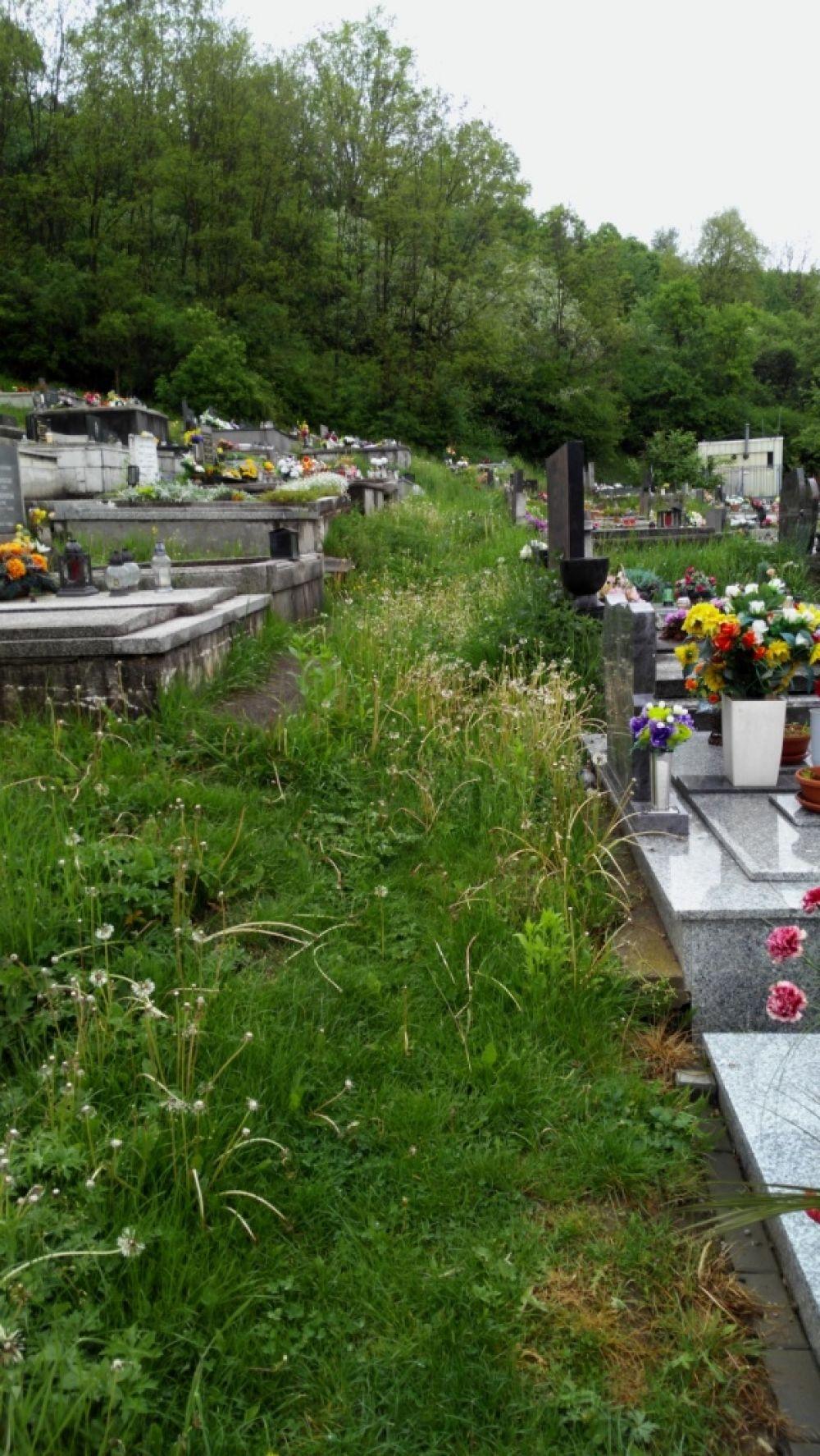Cintorín závodie 13.5.2016, foto 2