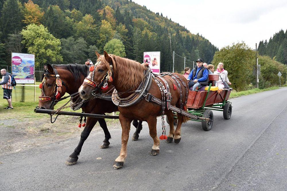 Karlovský gastrofestival už 1. - 2. októbra 2016, foto 1