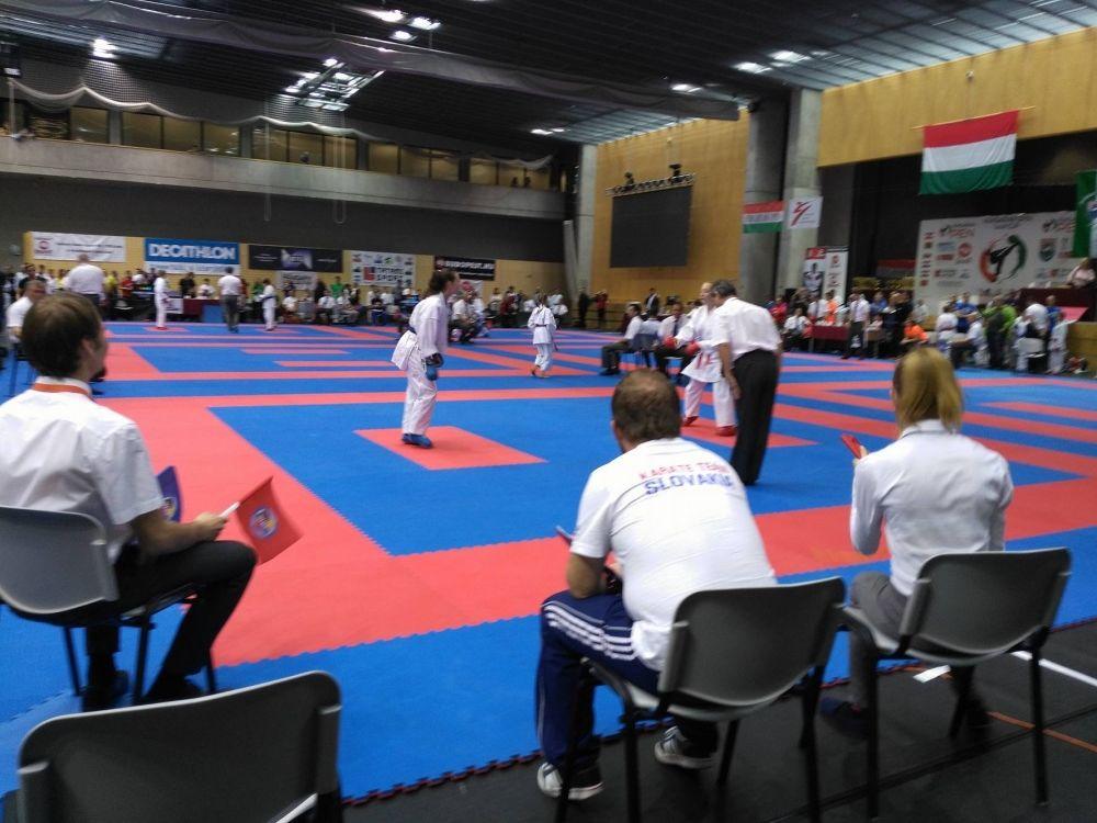 Hungarian Open + Lubovna Cup 2016 Karate AC Uniza , foto 1