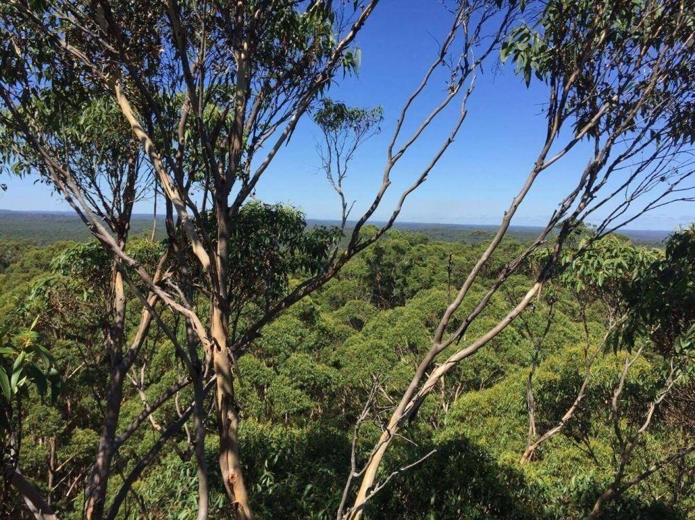 500 km naprieč Austráliou , foto 18