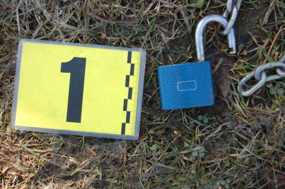 Dvaja mladíci zo Žiliny vykrádali autá, dvory a objekty, polícia ich dolapila, foto 3