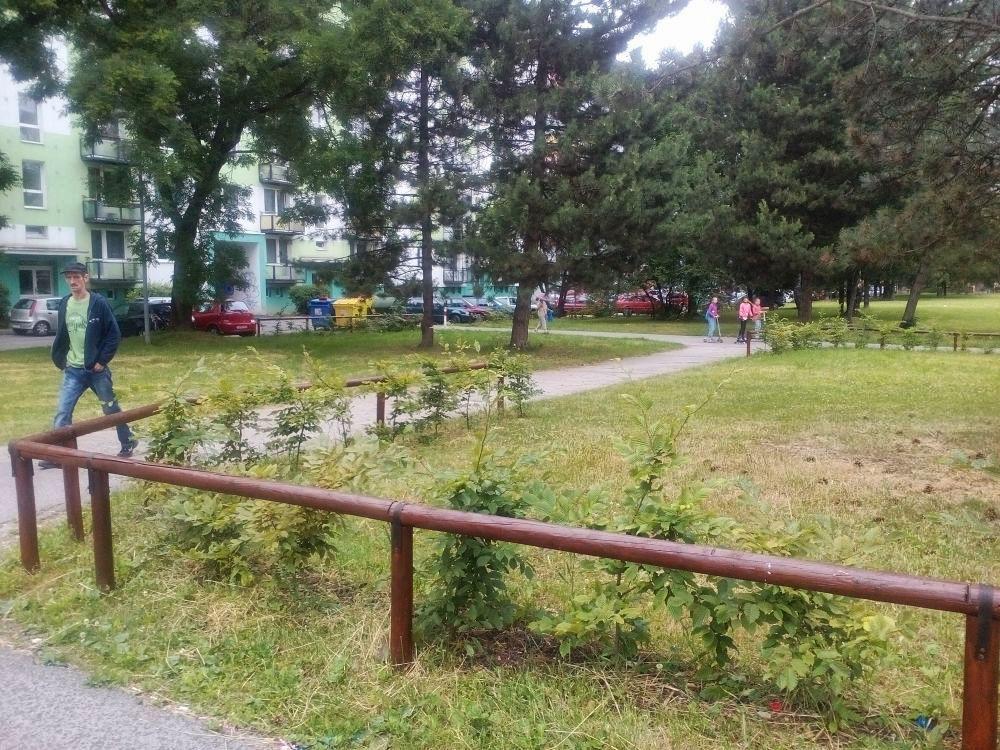 Drevené ohrady na sídlisku Vlčince oživili novým náterom, foto 4