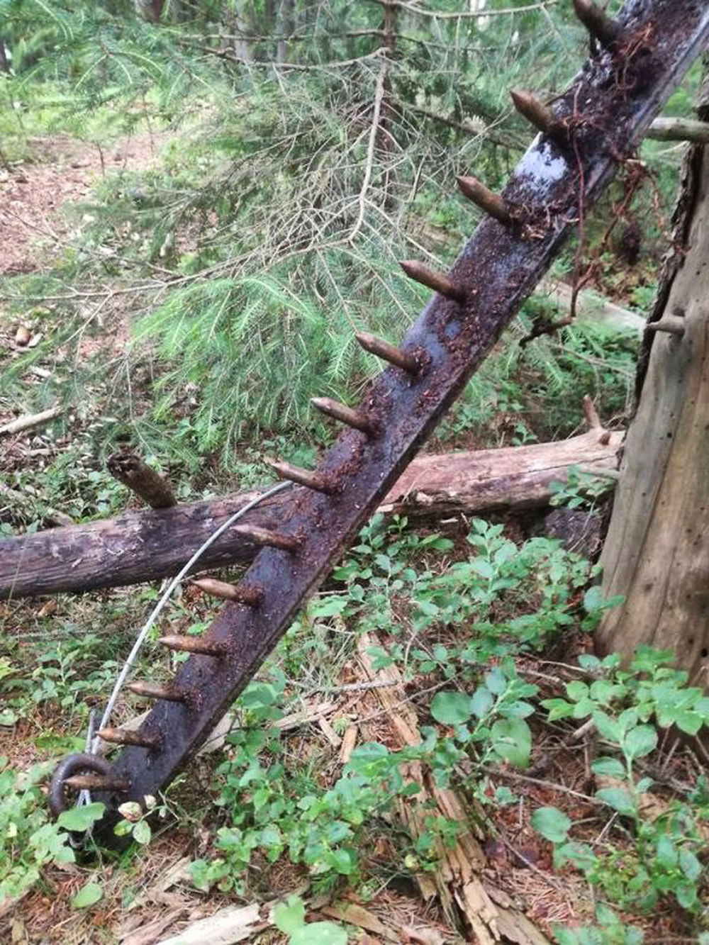 Nebezpečná pasca v Rajeckej doline, foto 3