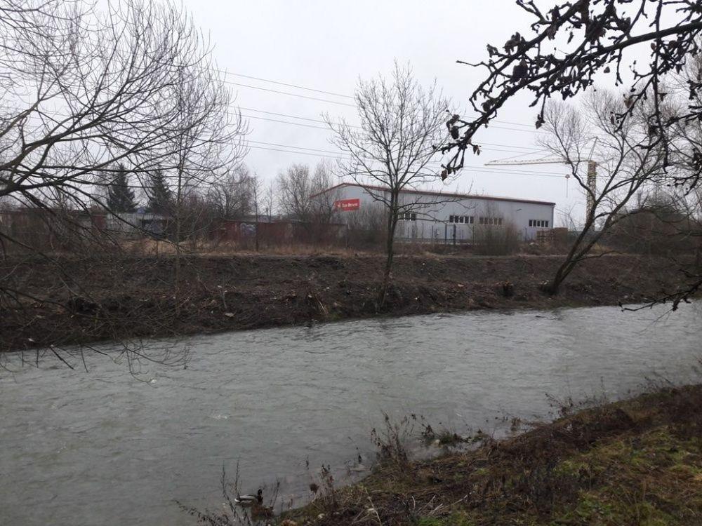 Výrub stromov v okolí Rajčanky - február 2018, foto 2