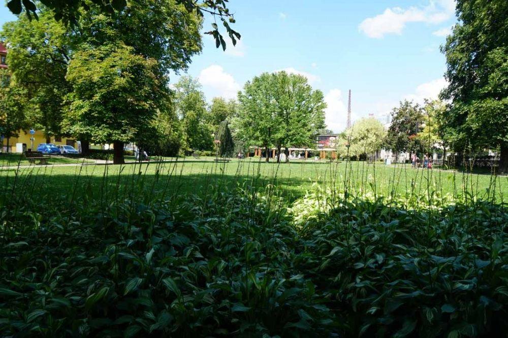 Sad SNP v Žiline čaká v roku 2018 revitalizácia, foto 11