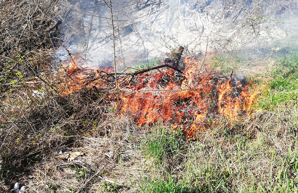 Požiar trávy a kríkov pri Rosinskej ceste 15.4.2019