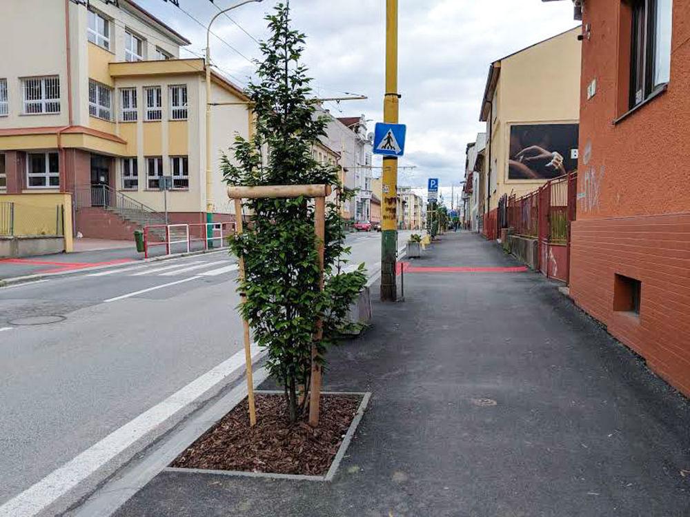 FOTO: Na ulici Komenského pribudla nová zeleň, foto 2