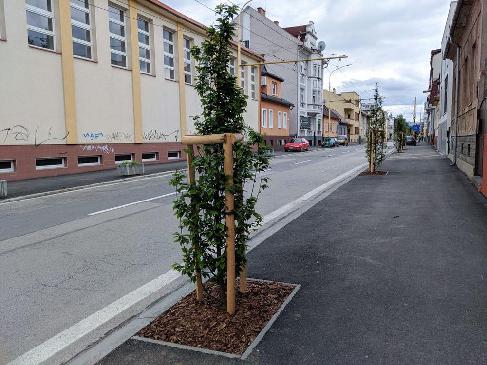 FOTO: Na ulici Komenského pribudla nová zeleň, foto 4