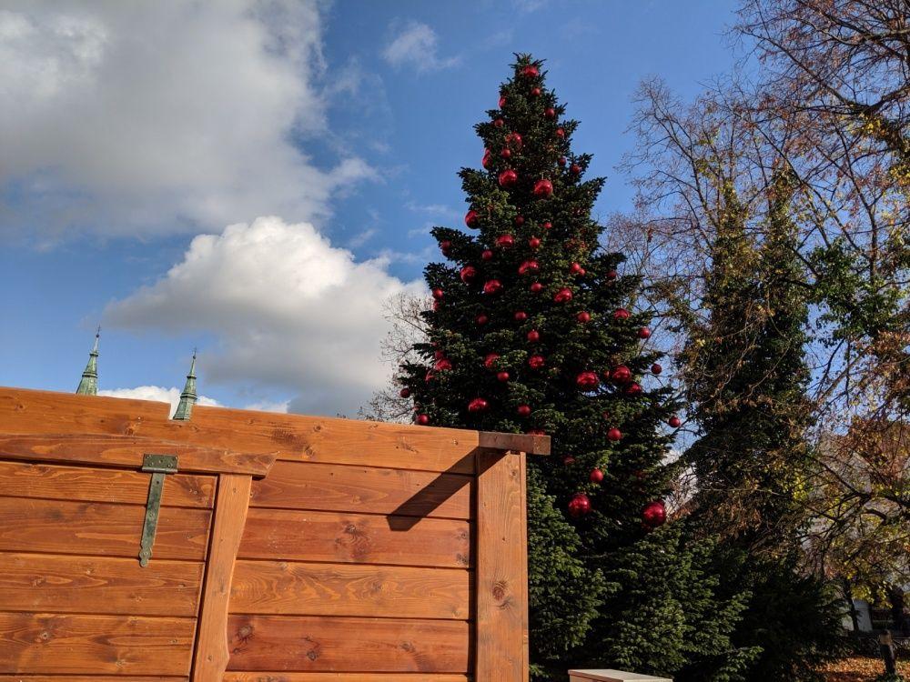 FOTO: Na Mariánskom námestí už pripravujú stánky a zdobia vianočný stromček, foto 1
