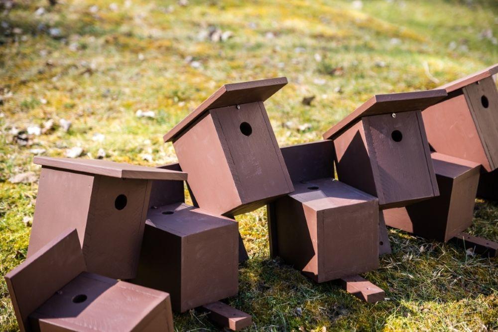 FOTO: V oddychovej zóne FRI UNIZA vybudovali ekodvor s búdkami pre vtáčiky, foto 16
