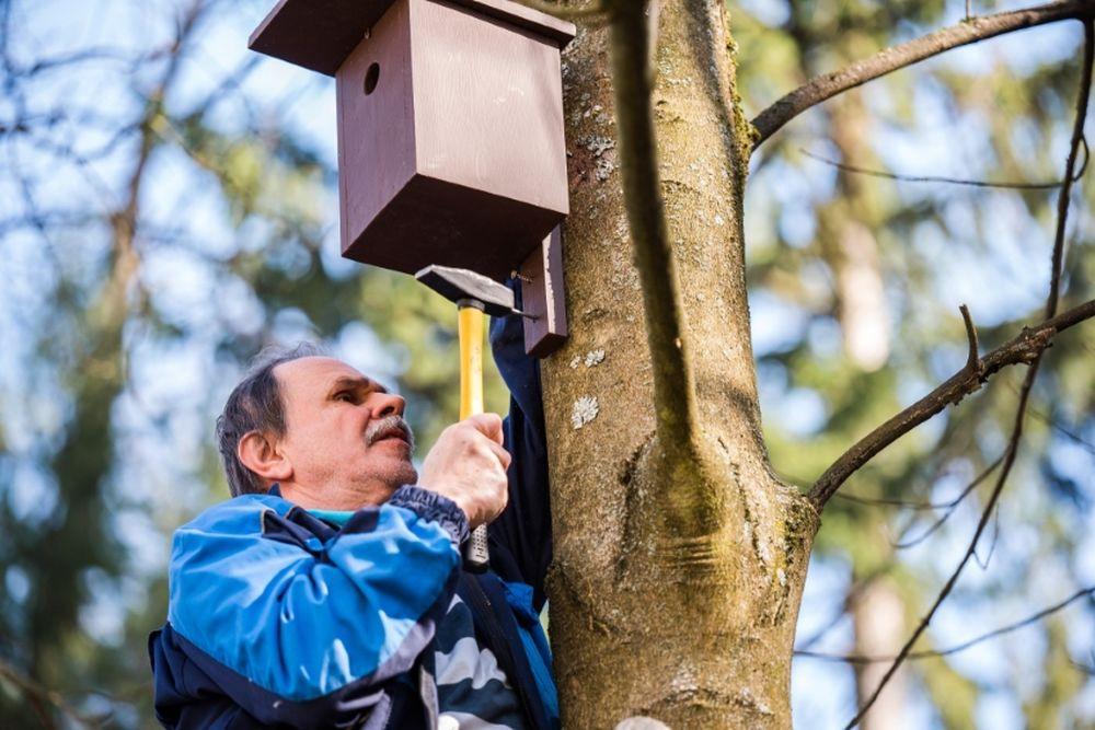 FOTO: V oddychovej zóne FRI UNIZA vybudovali ekodvor s búdkami pre vtáčiky, foto 17