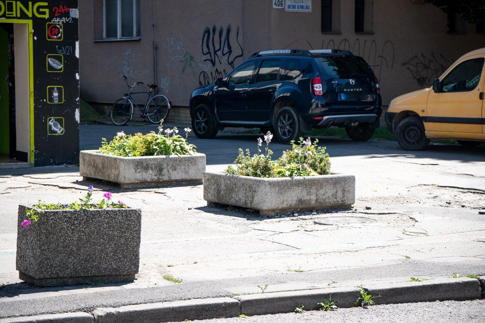 FOTO: Betónové kvetináče v centre Žiliny skrášlili vysadením trvaliek a trávy, foto 4