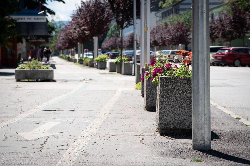 FOTO: Betónové kvetináče v centre Žiliny skrášlili vysadením trvaliek a trávy, foto 12