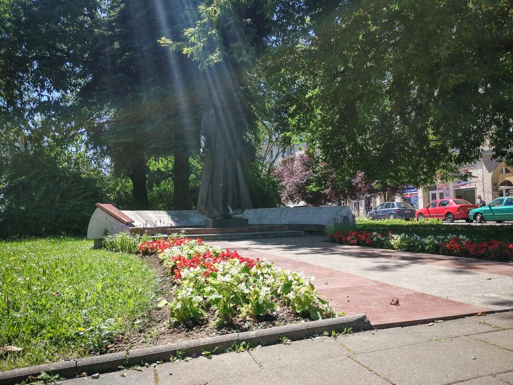 FOTO: Betónové kvetináče v centre Žiliny skrášlili vysadením trvaliek a trávy, foto 15