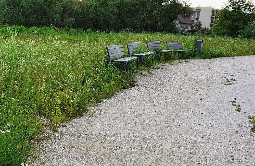 FOTO: Vysoká tráva a poškodené časti v Parku sv. Juraja v Trnovom, foto 6