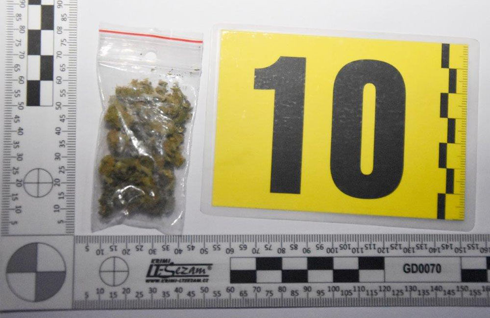 FOTO: Polícia v Žilinskom kraji odhalila a obvinila ďalších drogových dílerov, foto 1