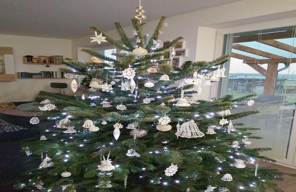 FOTO: Vianočné stromčeky v Žiline - výber fotografií našich čitateľov, foto 2