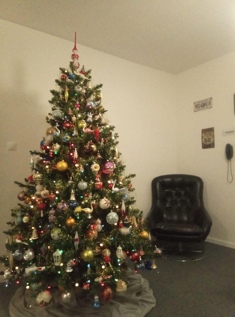 FOTO: Vianočné stromčeky v Žiline - výber fotografií našich čitateľov, foto 3