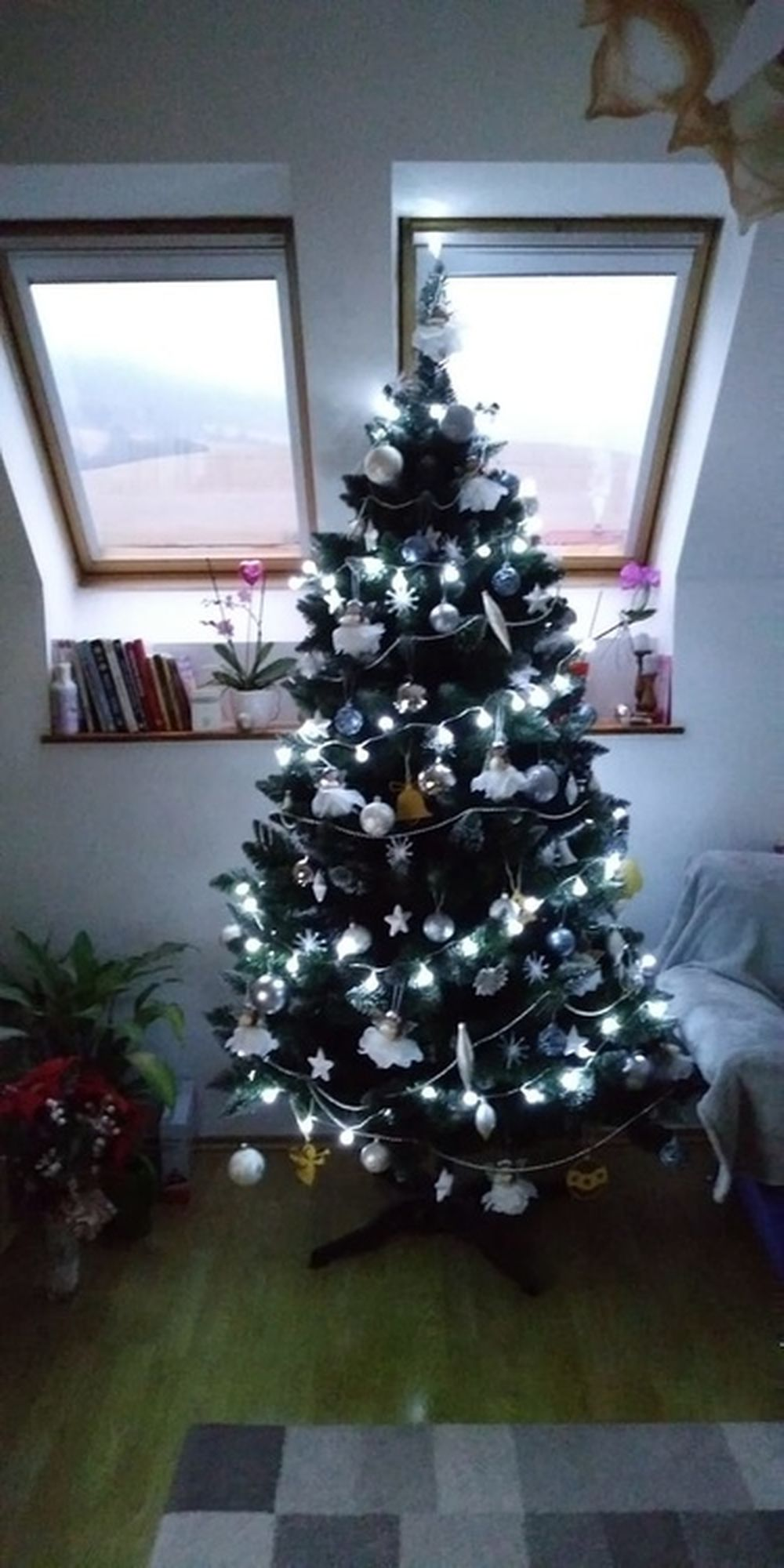 FOTO: Vianočné stromčeky v Žiline - výber fotografií našich čitateľov, foto 4
