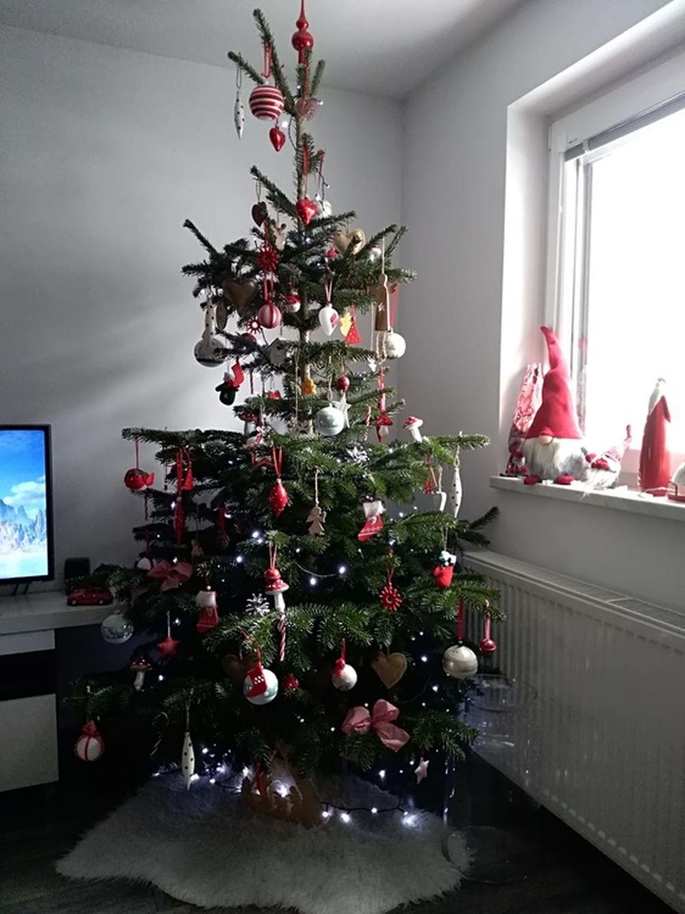 FOTO: Vianočné stromčeky v Žiline - výber fotografií našich čitateľov, foto 5