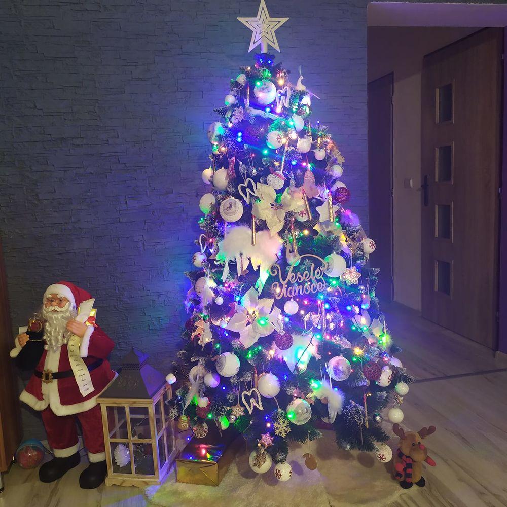 FOTO: Vianočné stromčeky v Žiline - výber fotografií našich čitateľov, foto 6