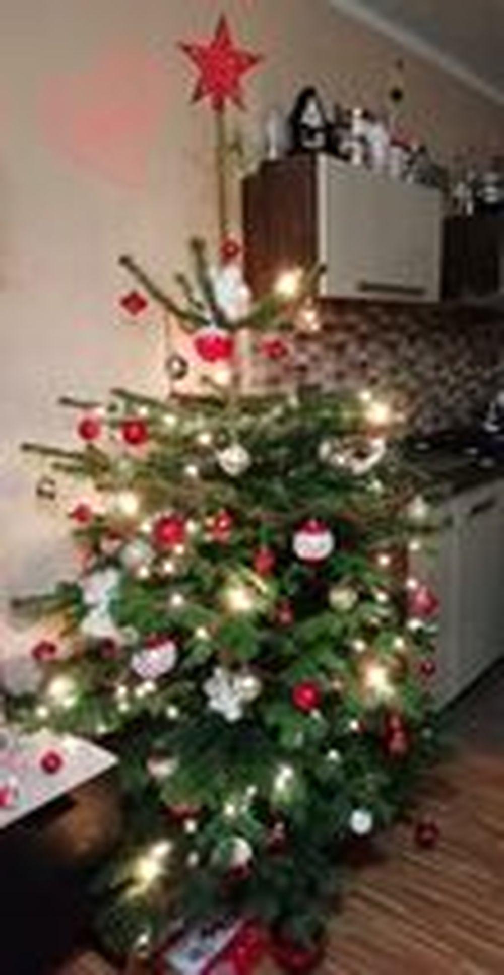 FOTO: Vianočné stromčeky v Žiline - výber fotografií našich čitateľov, foto 8