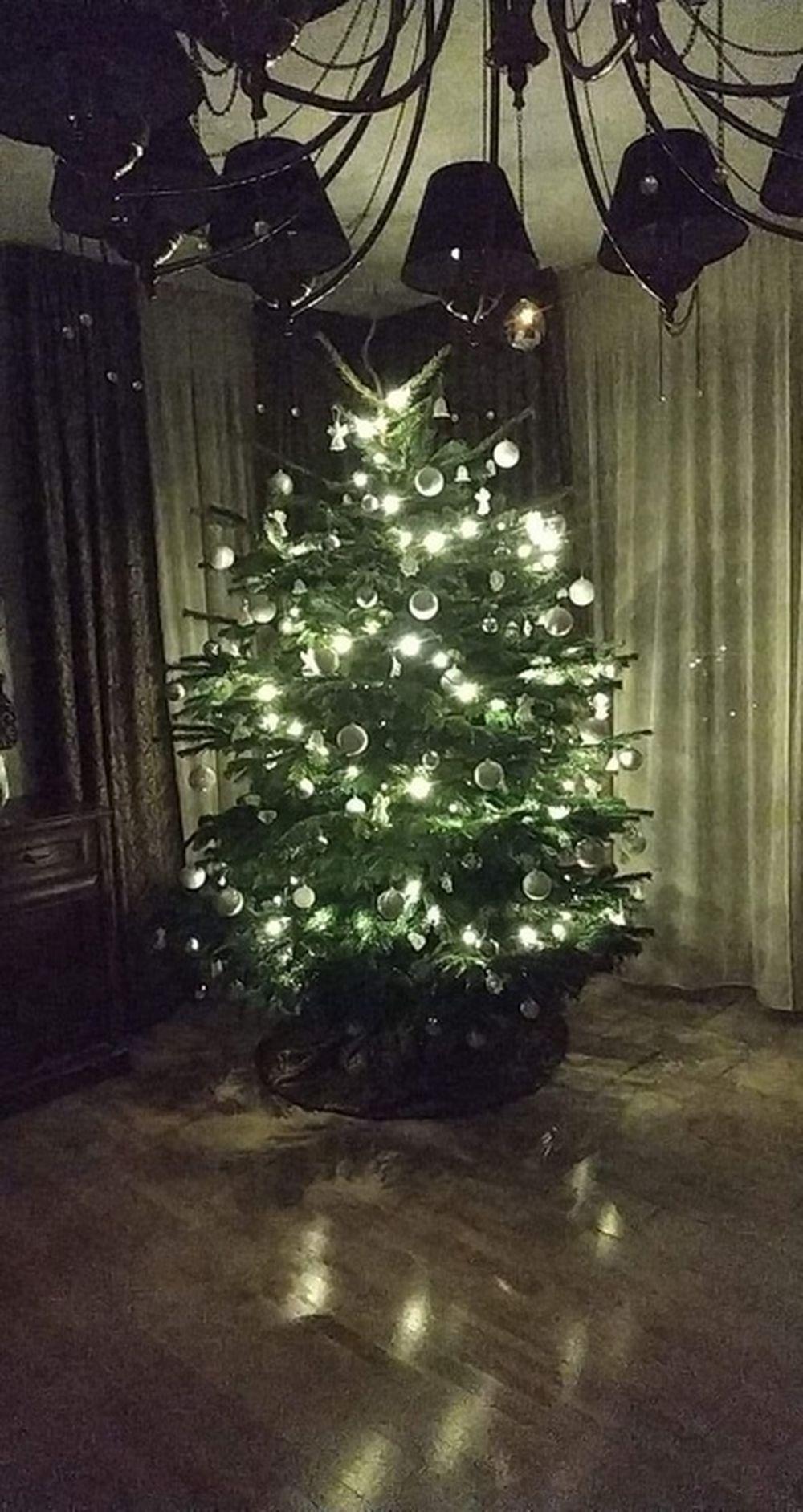 FOTO: Vianočné stromčeky v Žiline - výber fotografií našich čitateľov, foto 10