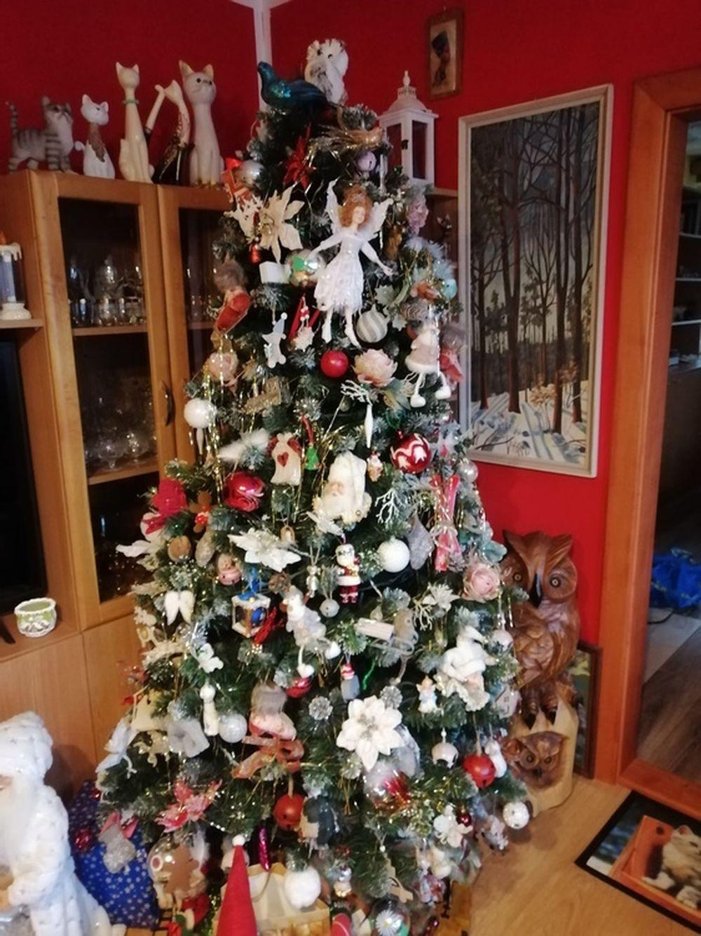 FOTO: Vianočné stromčeky v Žiline - výber fotografií našich čitateľov, foto 12