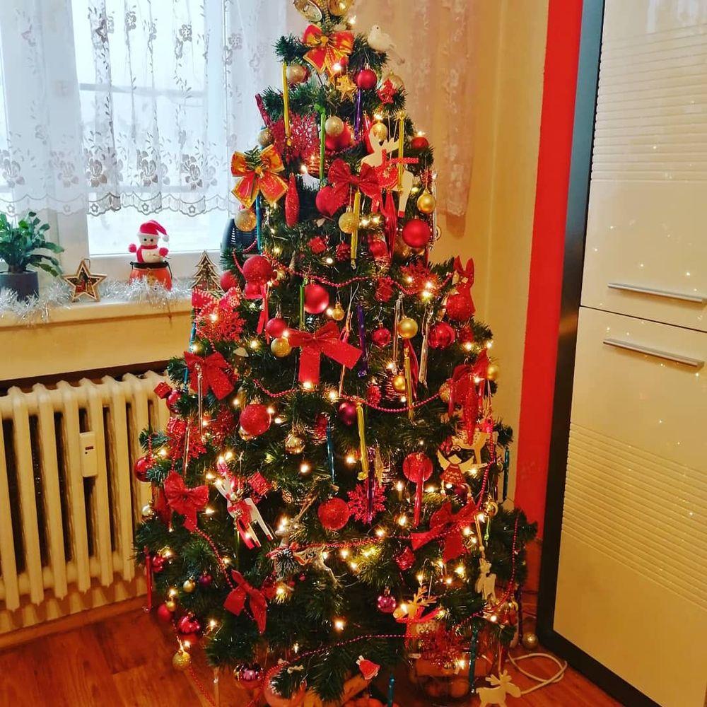 FOTO: Vianočné stromčeky v Žiline - výber fotografií našich čitateľov, foto 13