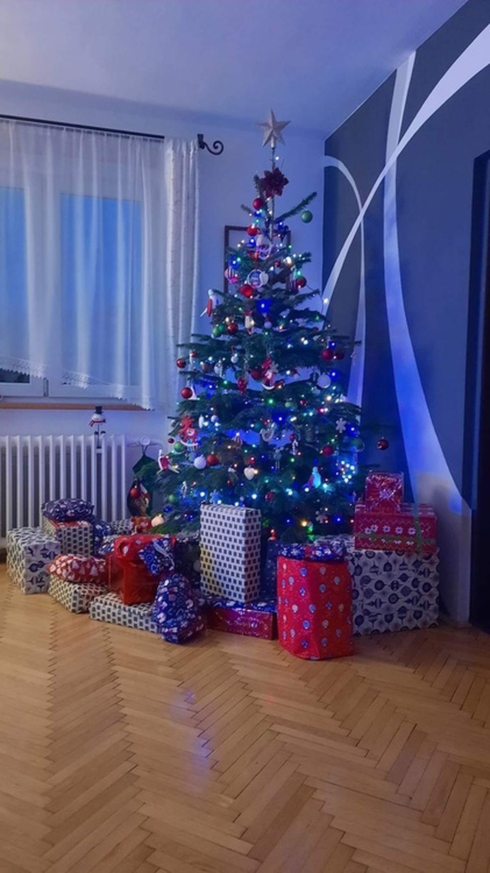 FOTO: Vianočné stromčeky v Žiline - výber fotografií našich čitateľov, foto 20
