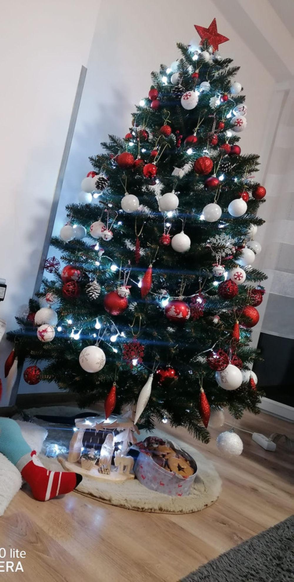 FOTO: Vianočné stromčeky v Žiline - výber fotografií našich čitateľov, foto 22
