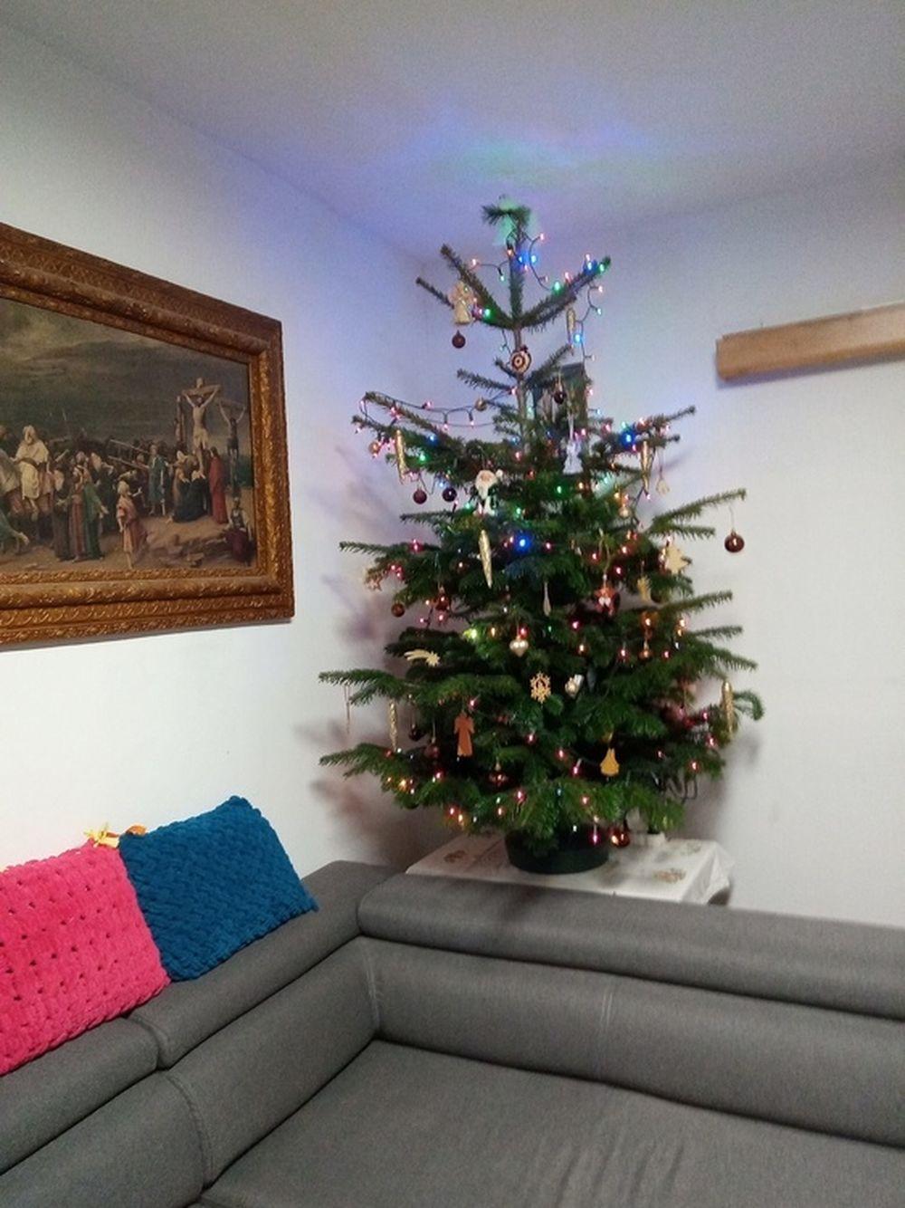 FOTO: Vianočné stromčeky v Žiline - výber fotografií našich čitateľov, foto 25