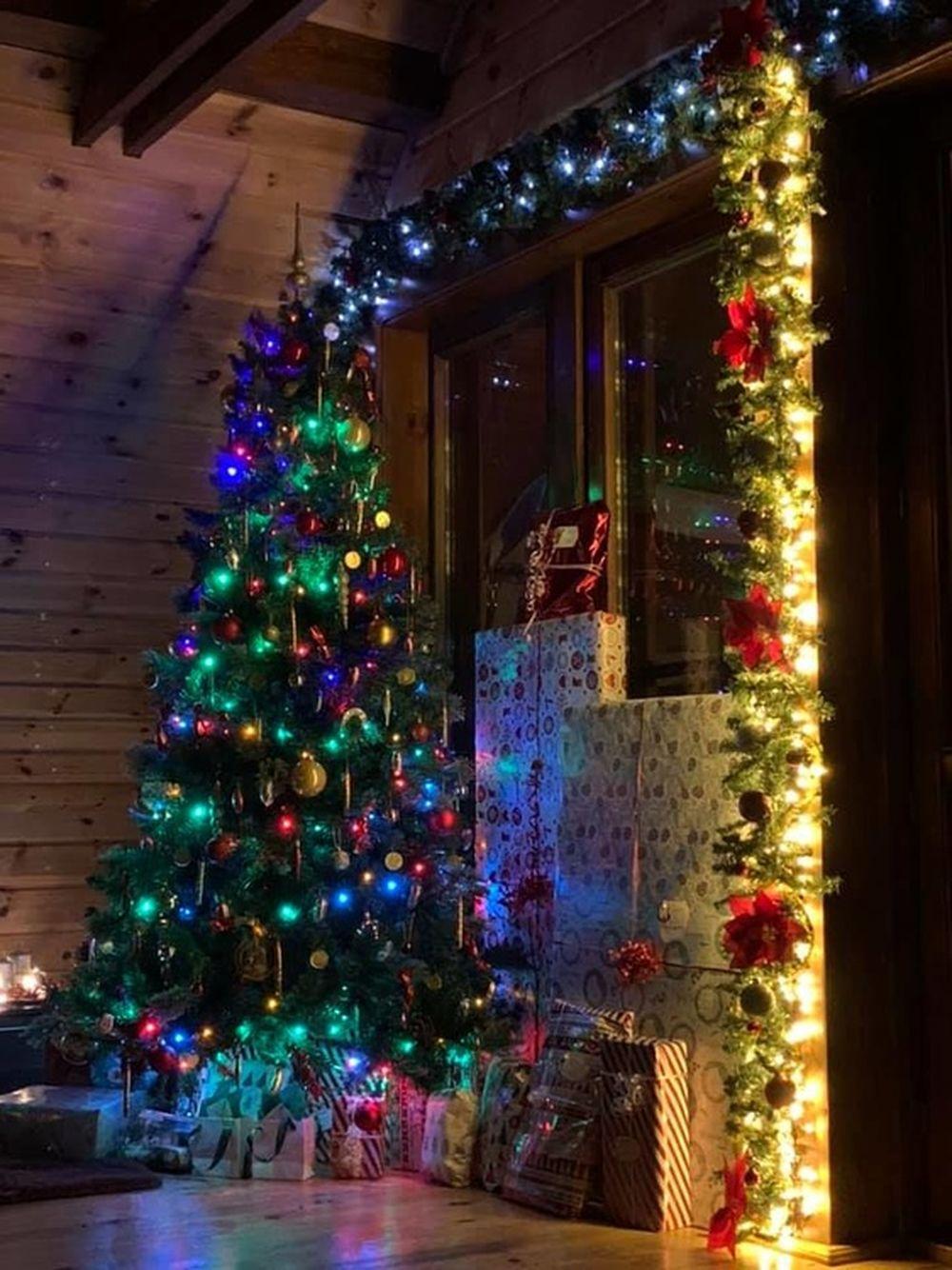 FOTO: Vianočné stromčeky v Žiline - výber fotografií našich čitateľov, foto 27