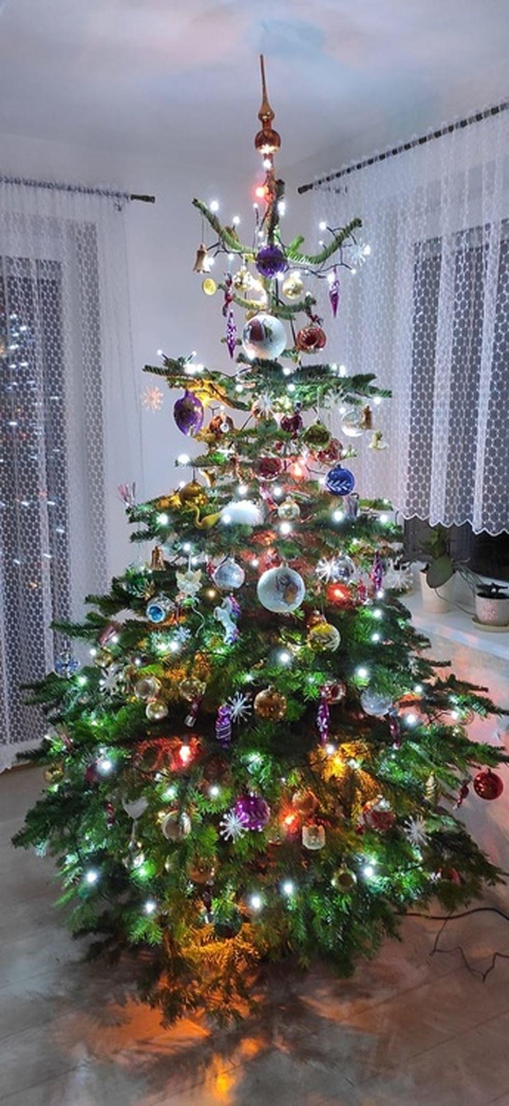 FOTO: Vianočné stromčeky v Žiline - výber fotografií našich čitateľov, foto 28