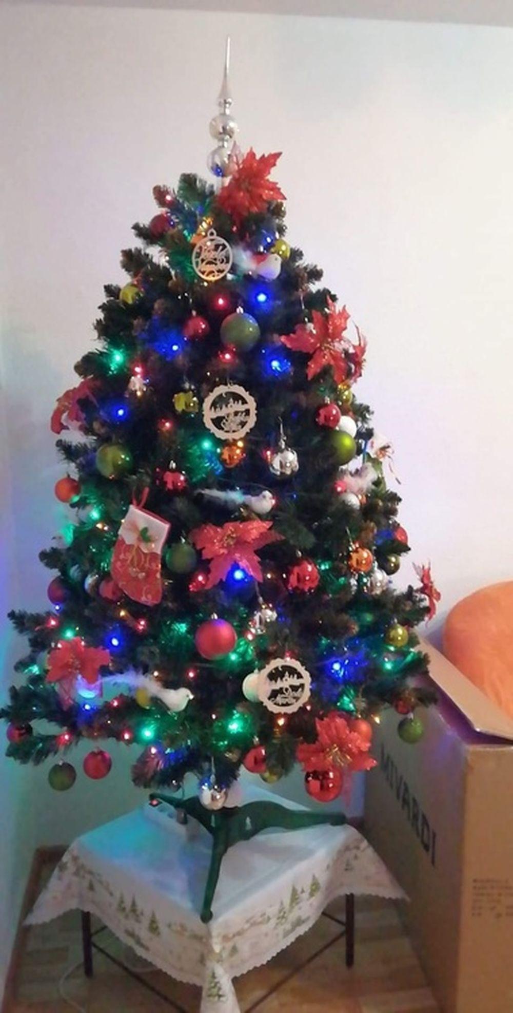 FOTO: Vianočné stromčeky v Žiline - výber fotografií našich čitateľov, foto 31