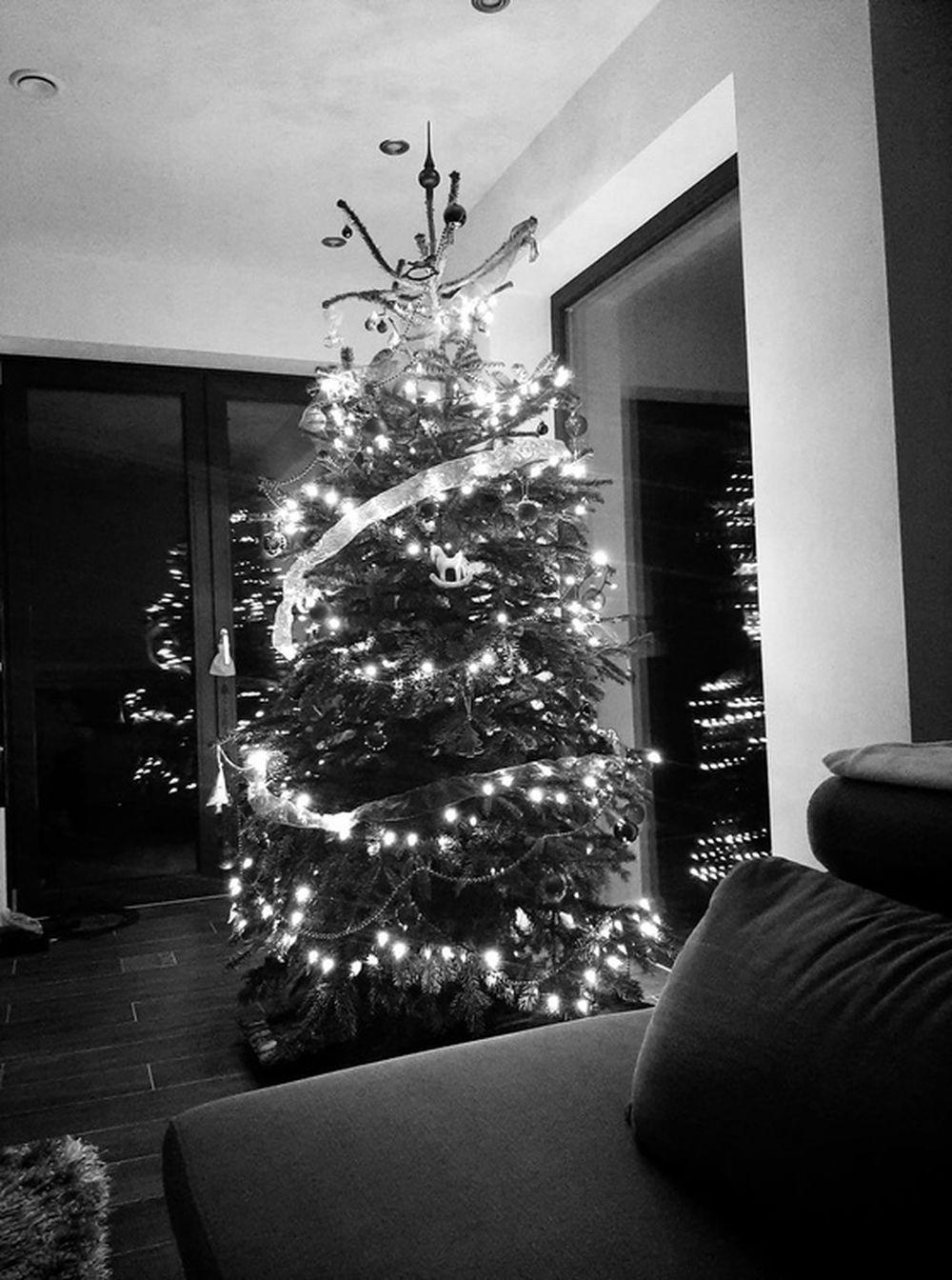 FOTO: Vianočné stromčeky v Žiline - výber fotografií našich čitateľov, foto 35