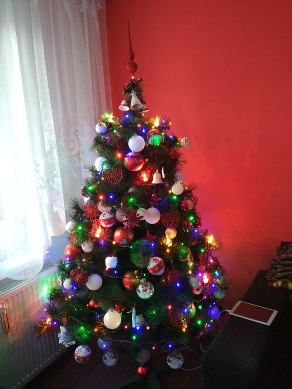 FOTO: Vianočné stromčeky v Žiline - výber fotografií našich čitateľov, foto 36