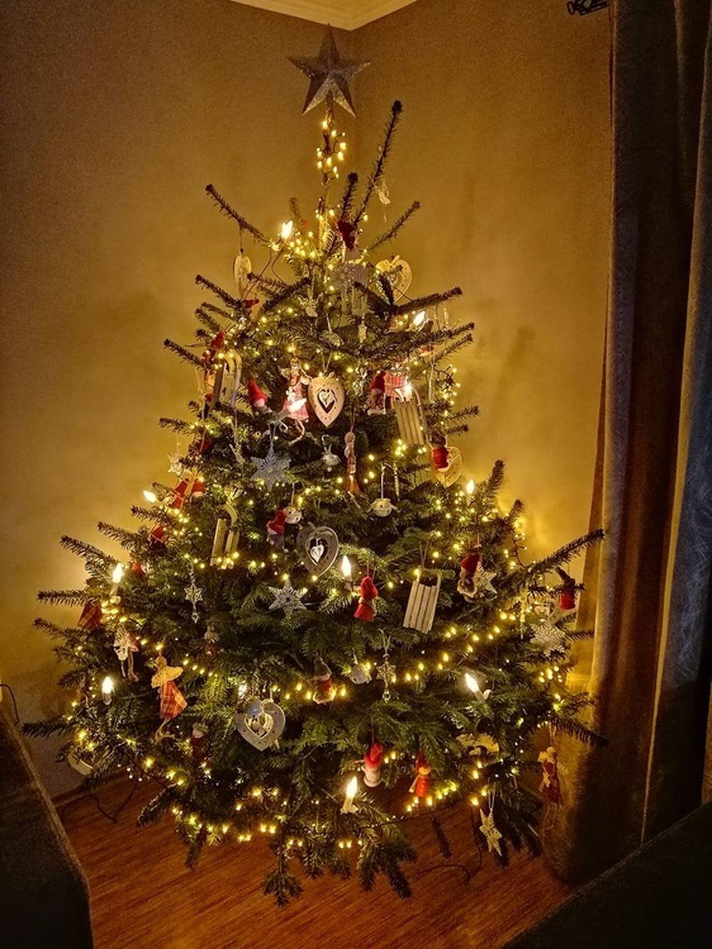 FOTO: Vianočné stromčeky v Žiline - výber fotografií našich čitateľov, foto 37