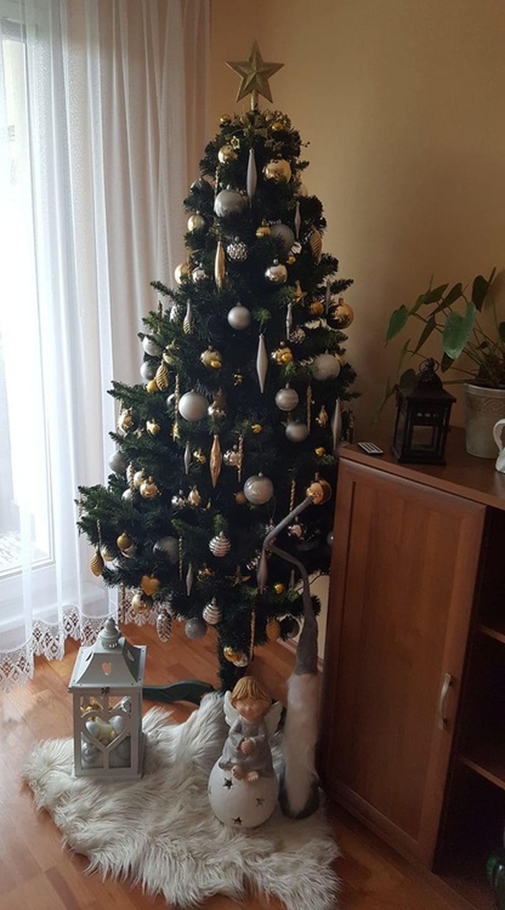 FOTO: Vianočné stromčeky v Žiline - výber fotografií našich čitateľov, foto 38