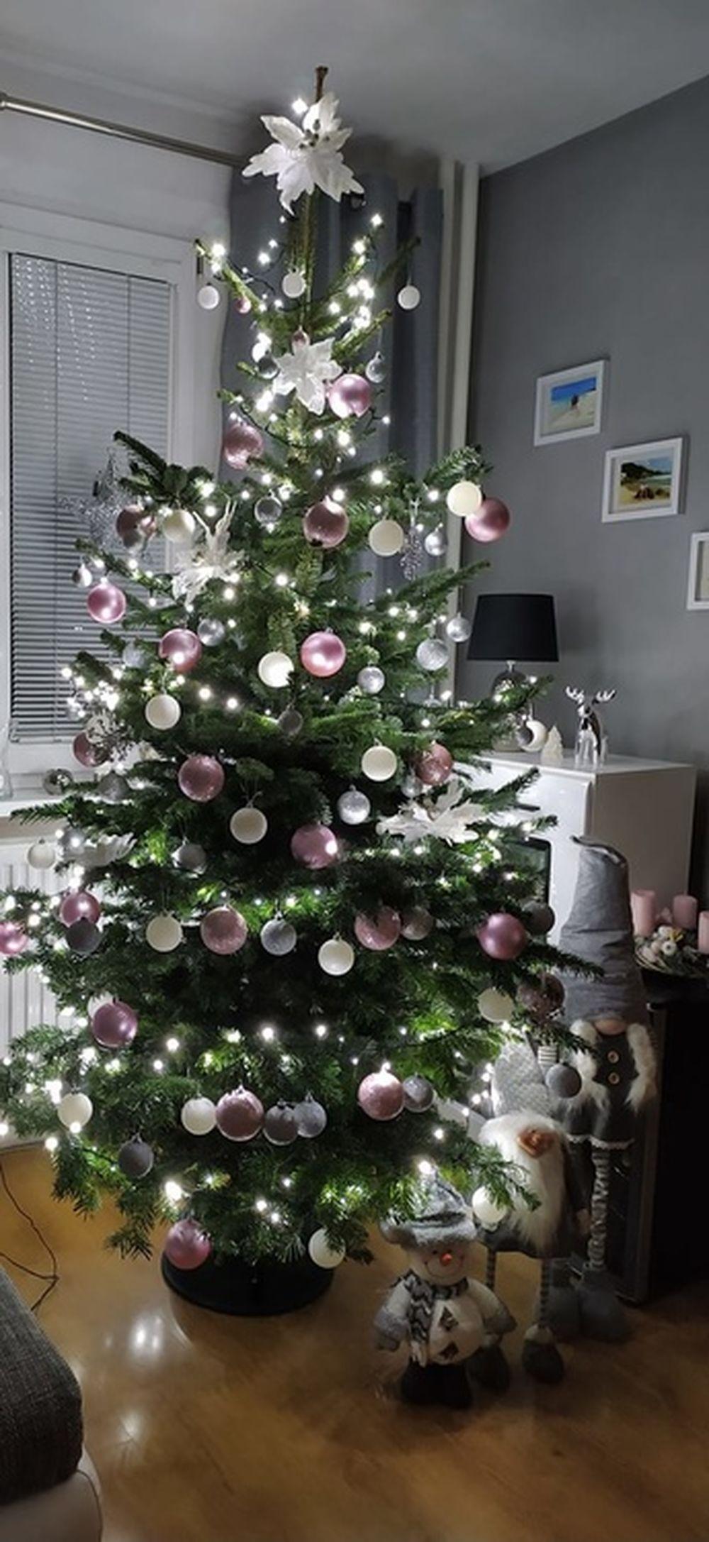 FOTO: Vianočné stromčeky v Žiline - výber fotografií našich čitateľov, foto 40