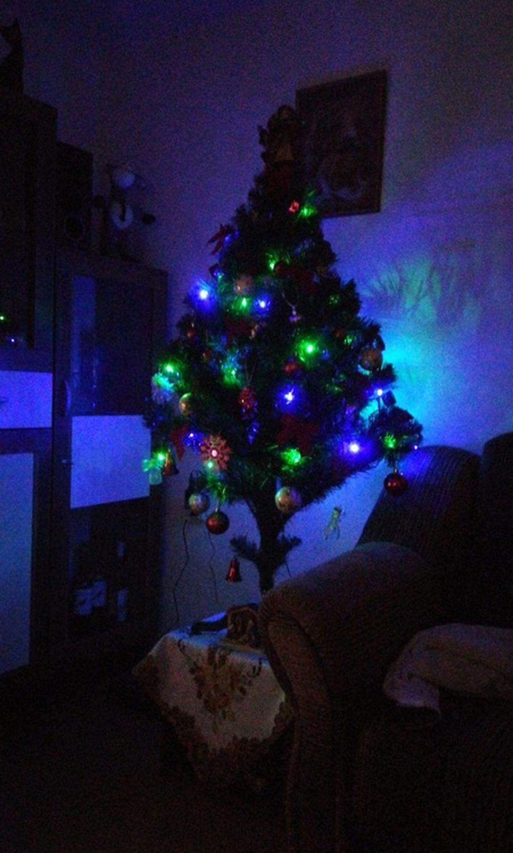 FOTO: Vianočné stromčeky v Žiline - výber fotografií našich čitateľov, foto 41
