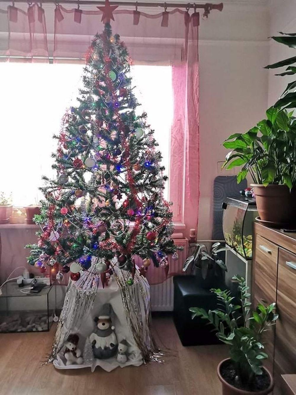 FOTO: Vianočné stromčeky v Žiline - výber fotografií našich čitateľov, foto 42