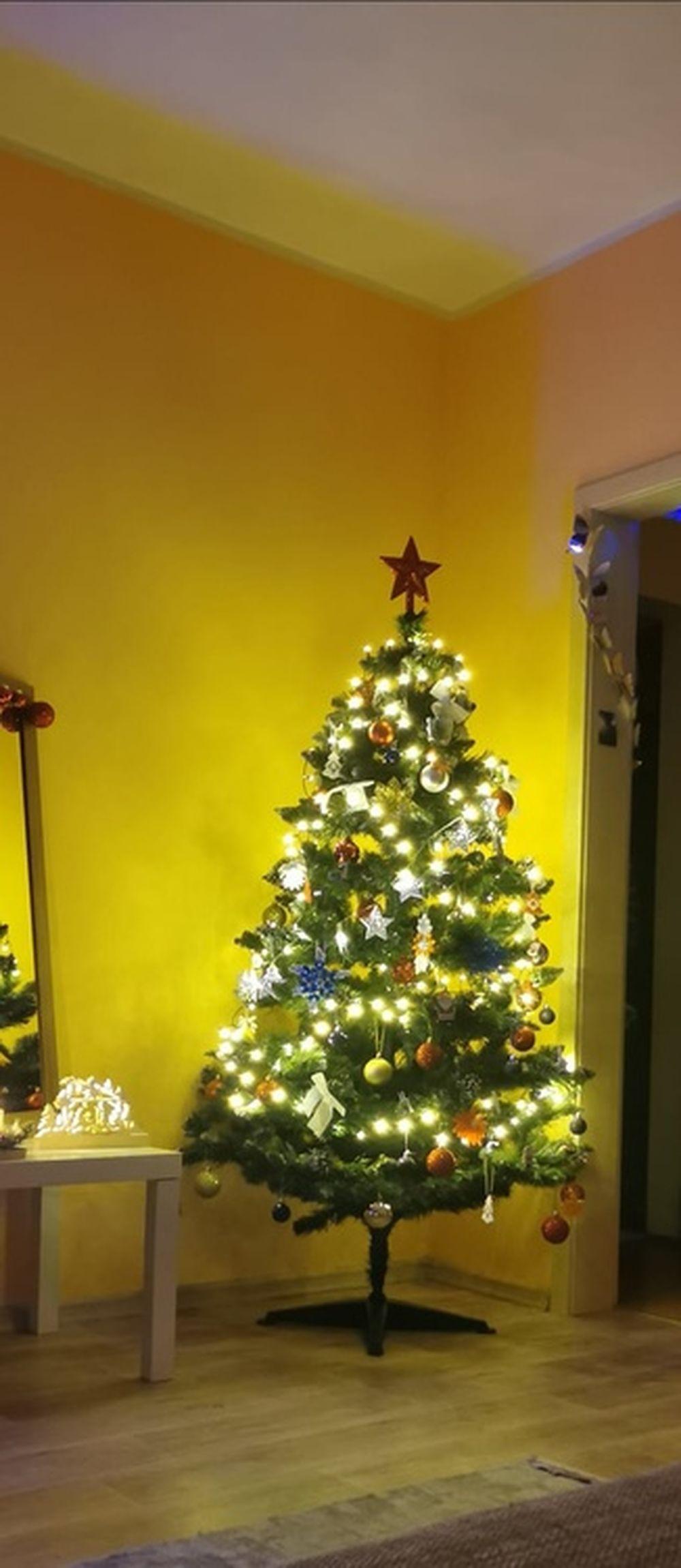 FOTO: Vianočné stromčeky v Žiline - výber fotografií našich čitateľov, foto 45
